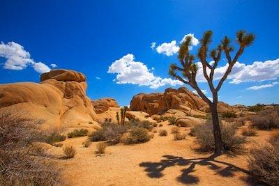Emerald Desert RV Resort - SunCruiser