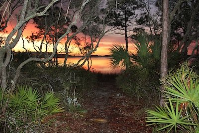 Grayton Beach_2012 contest_Lance Jorgensen_Pathway to Sunrise.JPG