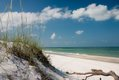 T.H. Stone Memorial St. Joseph Peninsula_contest_L_Millican_Dunes and Beach.jpg