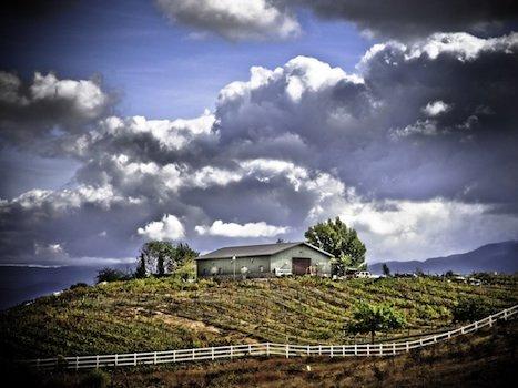 Palumbo Family Vineyards and Winery