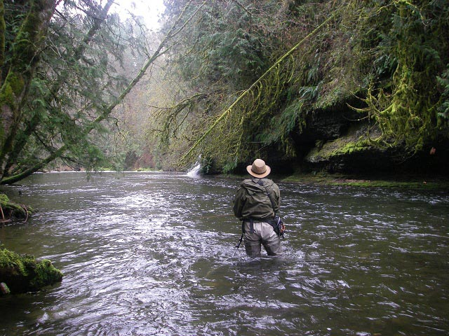 Suspended Angling In S Vancouver Is Amp Gulf Islands