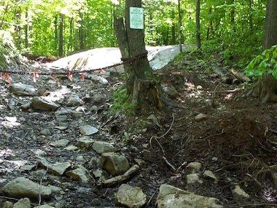 Adopt a Trail Greens Mountain