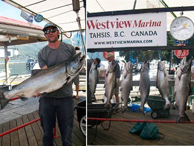 Westview Marina catch