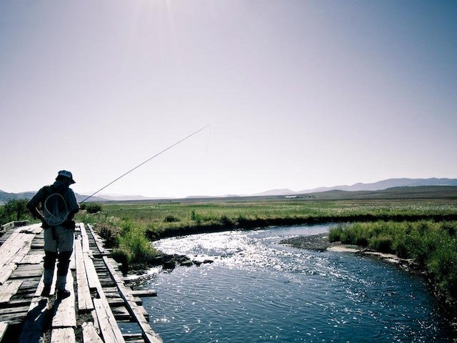 8 Tips for Figuring out the Trout