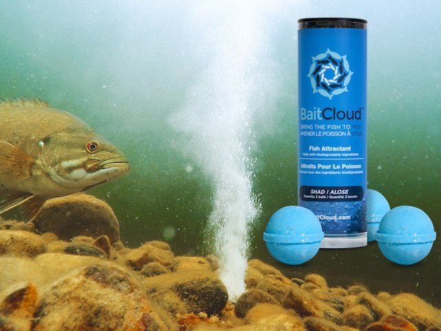 Baits accessories part 1 a b suncruiser for Baitcloud fish attractant