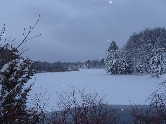Pinery_-_Old_Ausable_Channel_Winter_View_ Photo Ontario Parks.jpg