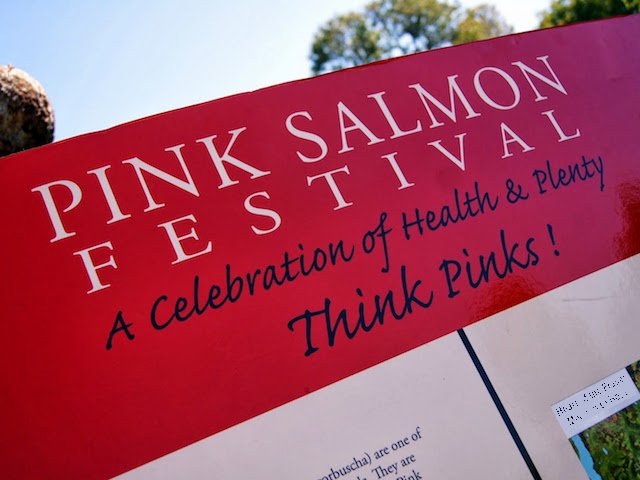 Pink Salmon Festival