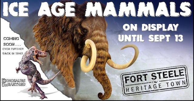 Ice Age Mammals - Suncruiser Media.jpg
