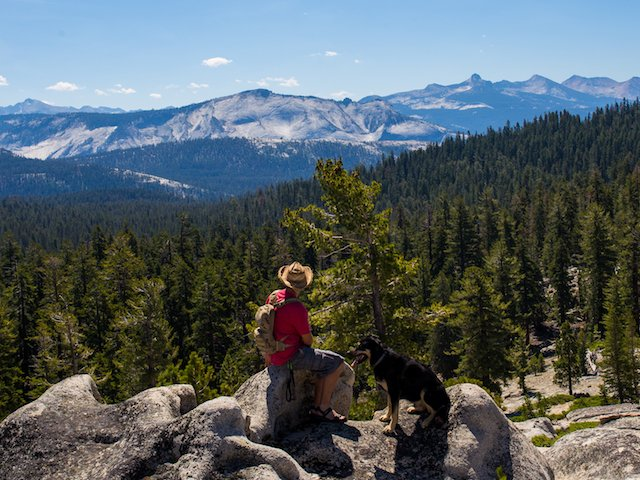 Me and Axel taking a minute to enjoy the sites in Yosemite National Park.jpg