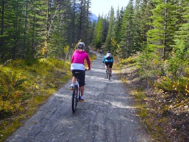 Reserve Your Alberta Provincial Park Site Suncruiser
