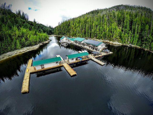 Newton Cove Resort photo Nootka Marine Adventures.jpg