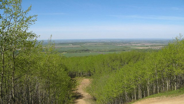 Saskatoon Mountain as a provincial recreation area photo Government of Alberta