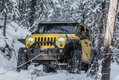 Jeep in the trees - Philip Cote ( owner Brad Macdonald)  (1 of 1).jpg