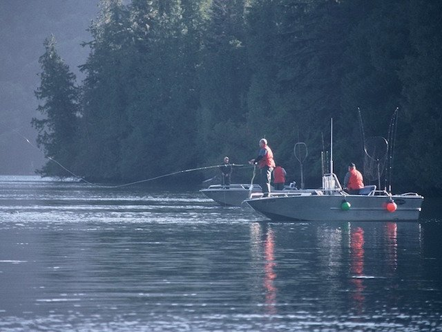 Fly casting to Chum salmon in Tasu Bay, Haida Gwaii photo David Kimble.jpg