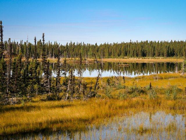 Typical landscape 6588 photo James Stoness-2.jpg