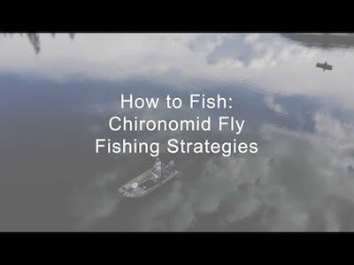 Chironomid fly fishing strategies - How to Fish Video teaser
