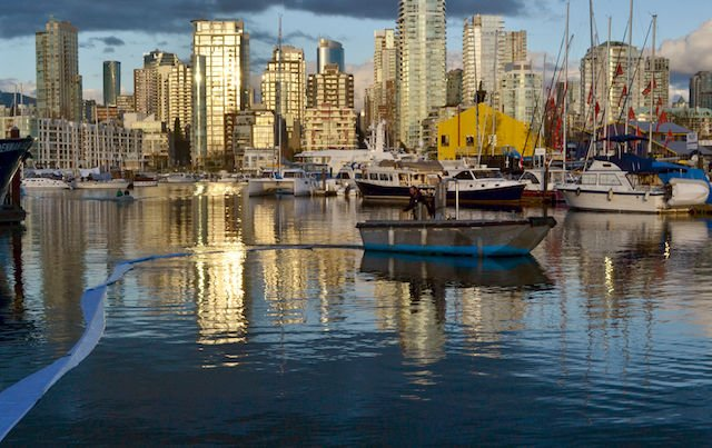 1 False Creek pic.jpg