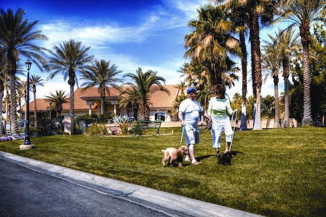 Couple Walking Dogs at LVM Resort.jpeg