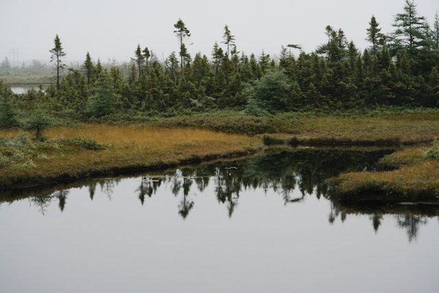 Northern Reflections JStoness 6434.jpg