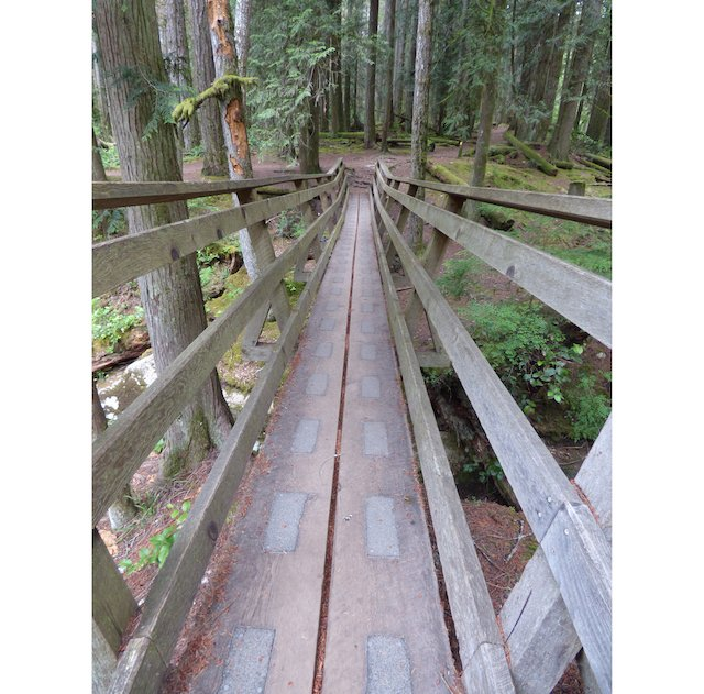 Cliff Gilker park trail.jpg