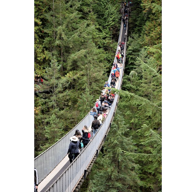 10 Capilano Bridge photo Dennis Begin.JPG