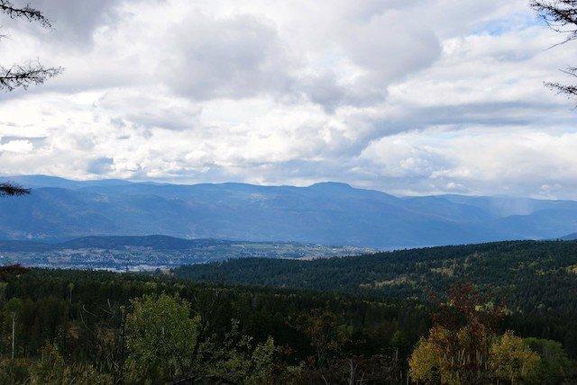the view  Kolyn Radbourne.jpg