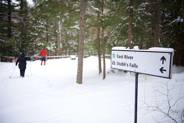 Arrowhead_Skiers.jpg
