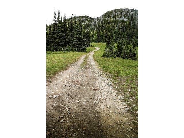 b. Trail for one photo Kristina Wheeler.jpg