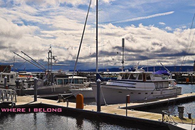 Port Townsend Marina Photo Rachel Samanyi.jpg