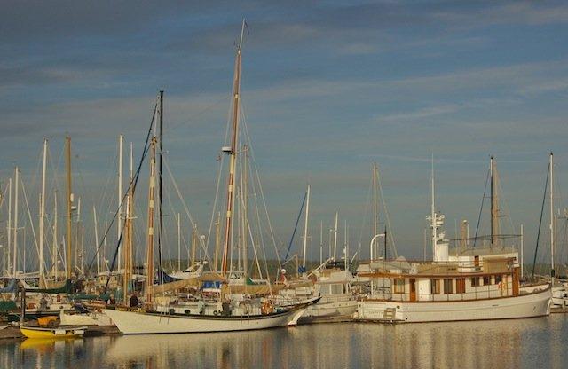 Port Townsend Marina Photo Alan.jpg