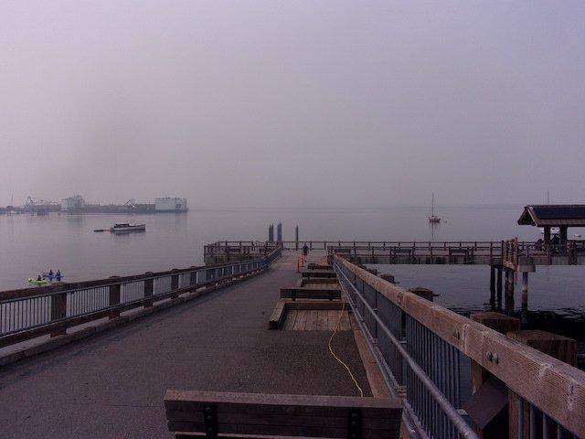 Bellingham Taylor Dock Photo Robert Ashworth.jpg