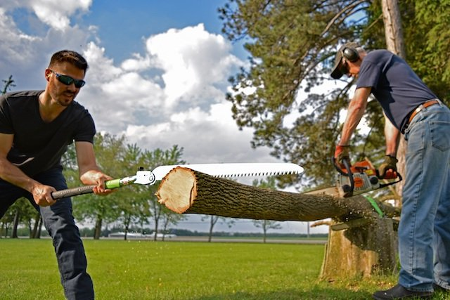2 Battle of Saws Photo Jason Livingston.jpg