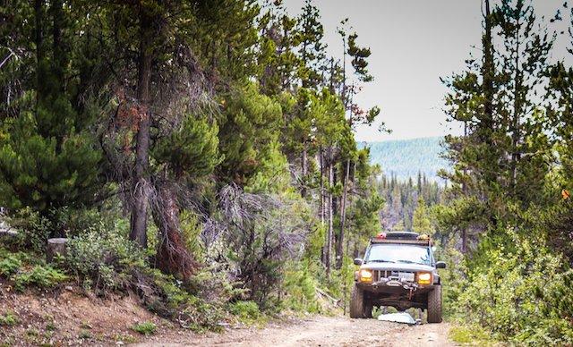 10. Poison Cresting the Ridge Photo Kristina Wheeler.jpg