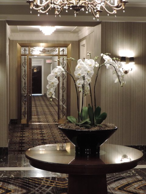 14th Floor with fresh orchids