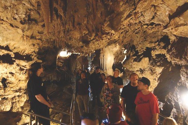 Lake Shasta Caverns Tours