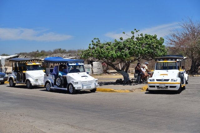 Drivers rest in the shade next to new but more traditional pulmonias.JPG