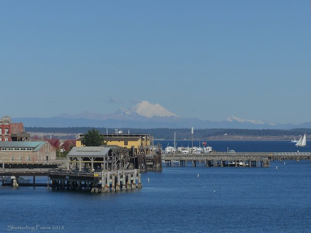 1. Port Townsend Shoreline Photo Sam O'Neil.jpg