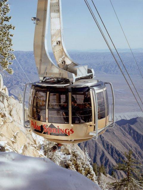 Tram Photo #1.jpg