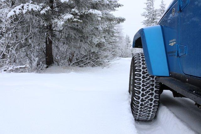 Lead Making fresh tracks on Christmas Day along with ATV's and snowmobiles.JPG
