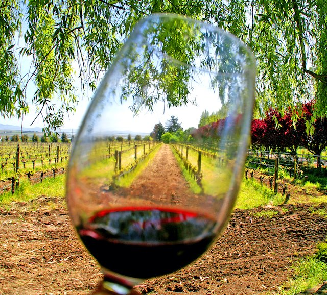 Wine_tasting_general_Kumweni.jpg