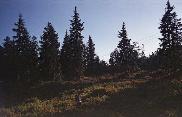 The hike to Mystery Lake.jpeg
