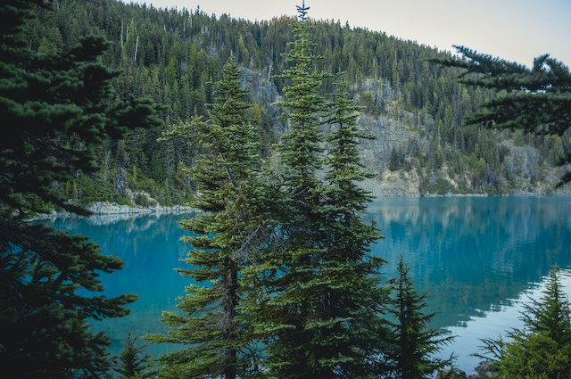 Garibaldi Lake through the forest.png