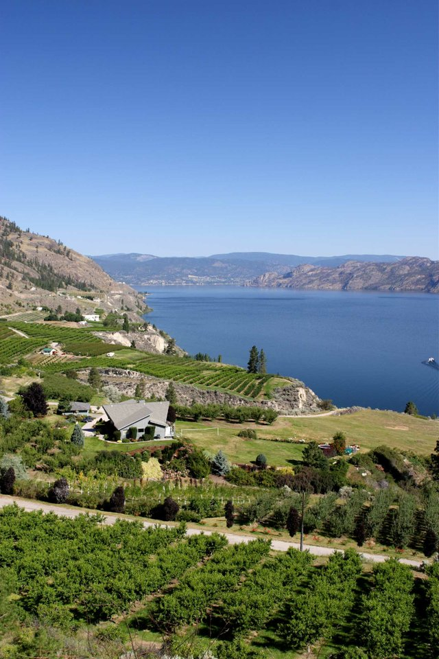 Investing in Kelowna Lake Front Homes - Tourism BC / Don Weixl, photographer