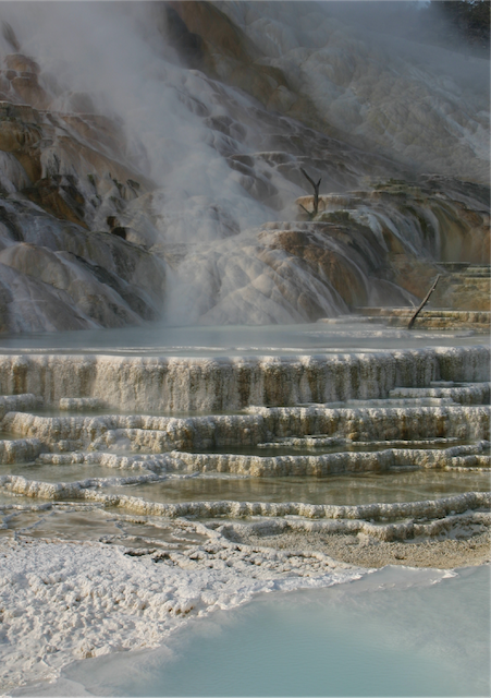 5 Yellowstone Revisited Photo  Robert J Lillie.png