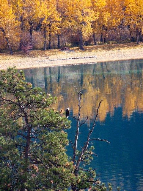 4 Kalamlka Lake Photo Tom Skinner.jpg