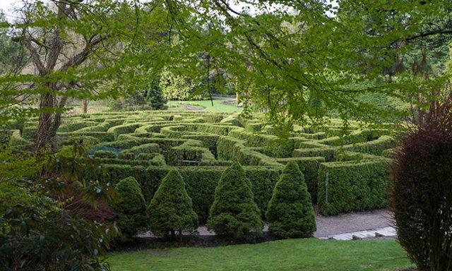 5 Oasis Vancouver Photo VanDusen Gardens.jpg