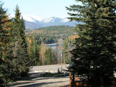 Timber Wolf Resort