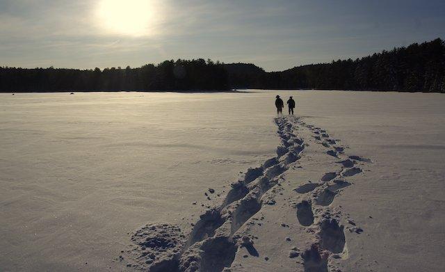 4 Ontario Winter Parks Photo D Brandsma .jpg