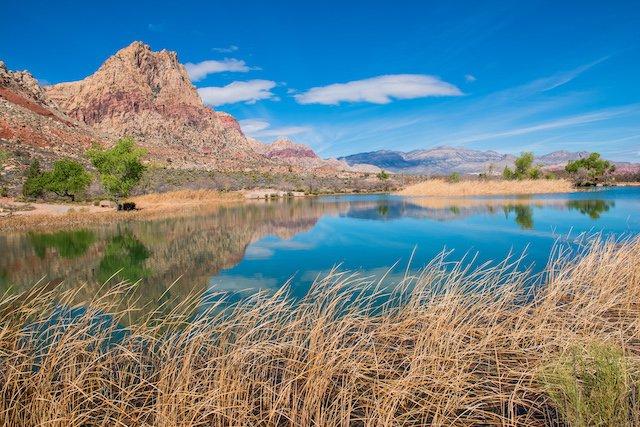 Lead Nevada State Parks Photo Matt Deavenport.jpg