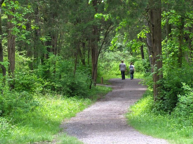 4 Photo Virgina State Parks.jpg